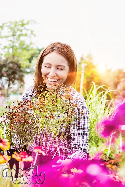 Portrait of mature female gardener arranging flowers on pot in shop