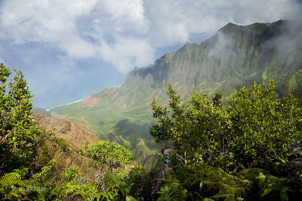 Views of Kalalau Valley from Kalalau Lookout  - high above the ocean in Koke'e State Park in Kauai, Hawaii.