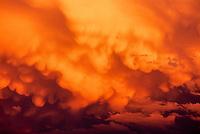 Cumulonimbus storm clouds at sunset; Colorado