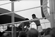 Ali vs Lewis Fight, Croke Park,Dublin..1972..19.07.1972..07.19.1972..19th July 1972..As part of his built up for a World Championship attempt against the current champion, 'Smokin' Joe Frazier,Muhammad Ali fought Al 'Blue' Lewis at Croke Park,Dublin,Ireland. Muhammad Ali won the fight with a TKO when the fight was stopped in the eleventh round....Picture shows Ali gaining the upperhand in the non title bout.