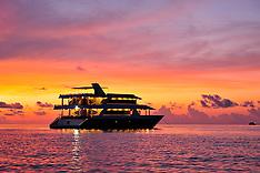 Safari/Yachts