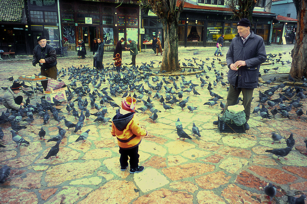 Feeding pigeons in a town square, Sarajevo, Bosnia