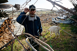 A farmer walks his goats around the rubble of his family's destroyed home in the Ezbat Abed Rabu neighborhood of Jabaliya in the Gaza Strip. The farmer said that the family was evacuated before the home was destroyed killing nearly all but a few of the family's goats during Israel's 2008-09 invasion of Gaza.