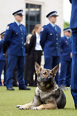 Wellington-Police Pay Day parade, Civic Square