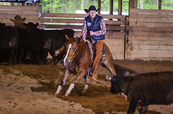 May 21, 2017 - Minshall Farm Cutting 4, held at Minshall Farms, Hillsburgh Ontario. The event was put on by the Ontario Cutting Horse Association. Riding in the Non-Pro Class is Eric Bouchard on The Reyl Slim Shady owned by the rider.