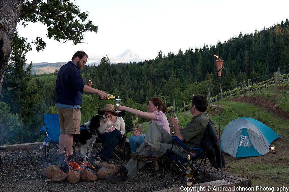 Couples enjoy picnic of local wine and food, Phelps Creek Vineyard, Columbia River Gorge, Oregon
