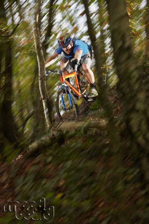 Mountain biker in woodland motion blur
