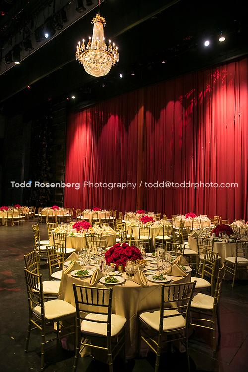 6/10/17 6:23:39 PM <br /> <br /> Young Presidents' Organization event at Lyric Opera House Chicago<br /> <br /> <br /> <br /> &copy; Todd Rosenberg Photography 2017