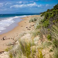 sandy beach with grass on dunes