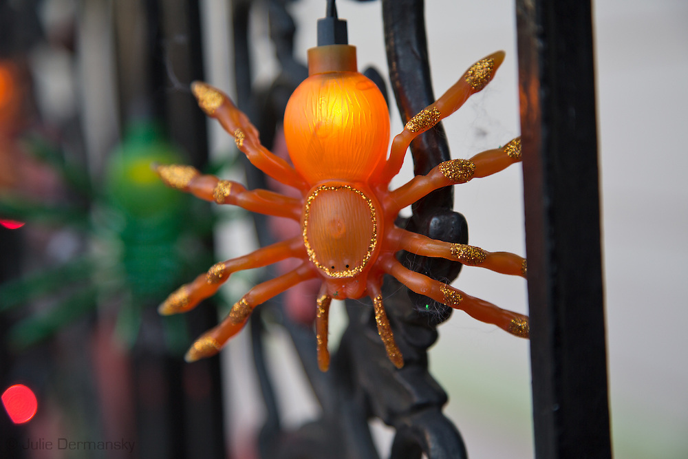 Halloween strand of spider lights on a house in New Orleans Faugburg Marigny.