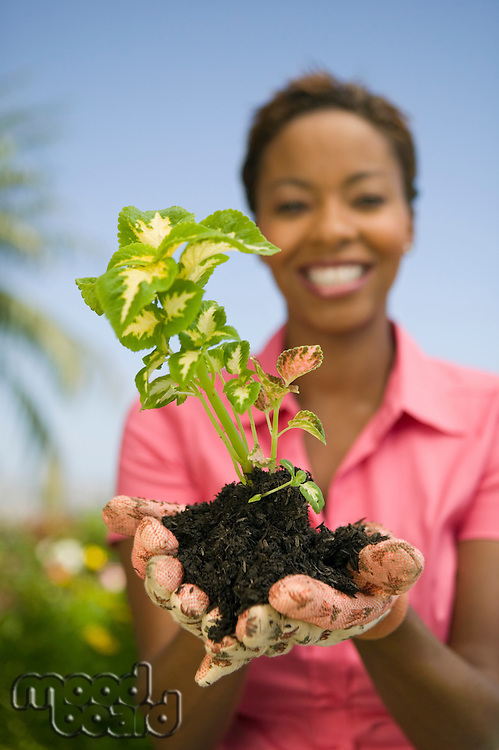 Woman Holding New Plant