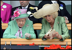 HM The Queen and The Duchess of Cornwall look over the parade ring from the royal box at Royal Ascot 2013<br /> Ascot, United Kingdom<br /> Wednesday, 19th June 2013<br /> Picture by Andrew Parsons / i-Images