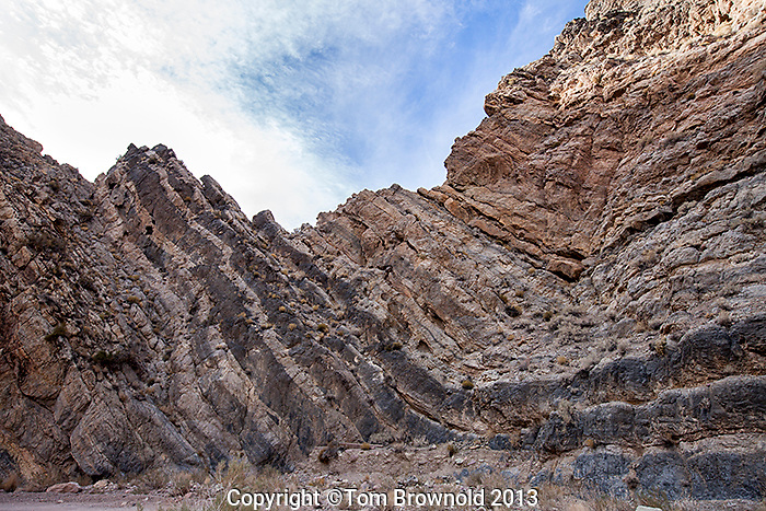 Limestone anticline at the head of Titus Canyon.