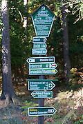 Wanderwegweiser, Wegweiser Wanderwege, Bielatal, Sächsische Schweiz, Elbsandsteingebirge, Sachsen, Deutschland | hiking track signs in Bielatal, Saxon Switzerland, Saxony, Germany