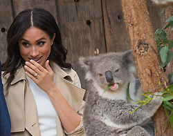 PICTURE RE-TRANSMITTED WITH CORRECT CAPTION INFO The Duchess of Sussex meets a Koala called Ruby during a visit to Taronga Zoo in Sydney on the first day of the Royal couple's visit to Australia.