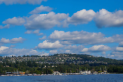 USA, Washington, Bellevue. View of the Somerset neighborhood from Lake Washington.