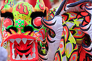 "14 FEBRUARY 2010 - PHOENIX, AZ: A Dragon Dancer dragon on display at the Chinese New Year celebration in Phoenix, AZ. This marks the Chinese ""Year of the Tiger."" The Chinese New Year Celebration at the COFCO Chinese Cultural Center in Phoenix attracted thousands of people. The celebration featured traditional Chinese entertainment and food.  PHOTO BY JACK KURTZ"