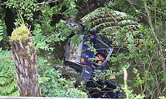 Auckland-70 year old's car plunges over bank at Dairy Flat