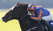 Curragh Races 121014