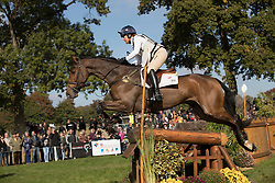Funnell Pippa, GBR, Billy Walk On<br /> World Championship Young Eventing Horses<br /> Mondial du Lion - Le Lion d'Angers 2016<br /> © Hippo Foto - Dirk Caremans<br /> 22/10/2016
