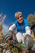 20160217 Volunteer Gardener