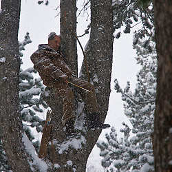 Mopsemand, played by Fermí Reixach, waits in a tree during a snow storm for Asta.