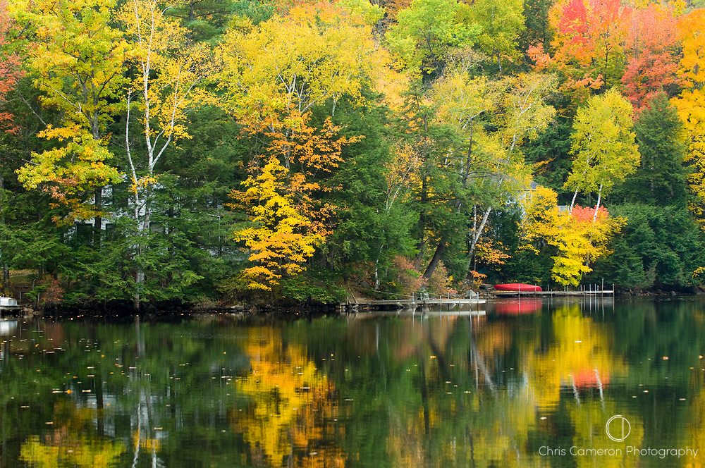 Fall colours reflect in Wickwas lake New Hampshirein New England, USA