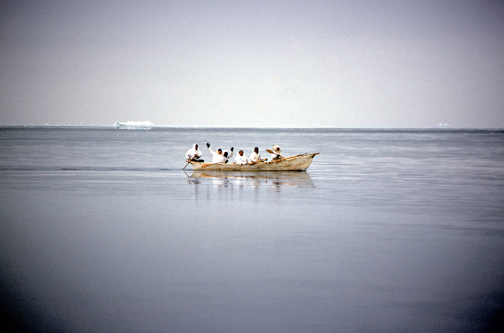 Barrow, Alaska, Alaska Native whaling crew in their umiak during the annual hunt for Bowhead Whale