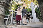 Autumn at a Japanese Shrine in central Nagoya city.