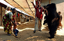 Elisa, 38 holds her grandchild in front of a bear who spits on a cotton thread that will be tied around the child's neck to protect her from ghosts and evil spirits who perished in the tsunami in Nagapattinam district in Tamil Nadu, India August  31,2005.  Villagers have been frightened by rumors of ghosts and are taking desperate measures to protect themselves in this society which is deeply superstitious. Even though billions of dollars have been put towards the devastation, the recovery process is slow and the situation still grim for many of the world's poorest.  (Ami Vitale)
