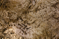Big Room flowstone formations, Carlsbad Caverns National Park New Mexico