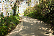 Road uphill through woods to interior, Island of Herm, Channel Islands, Great Britain