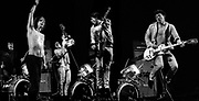 Slaughter & The Dogs - Live 1978