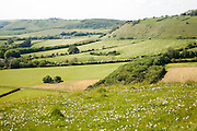 Steep chalk escarpment running westwards on the northern side of the Vale of Pewsey near Oare, Wiltshire, England, UK