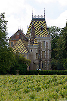 Chateau with decorated tiled roof, Cote d'Or France.