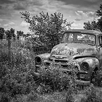 Rural scene with old american truck in undergrowth