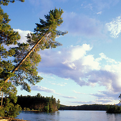 Greenville, ME. Northern Forest. Lily Bay on Moosehead Lake.  Lily Bay State Park.