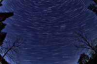 Winter Nighttime Sky Over New Jersey. Composite star trail image (05:00-05:29) taken with a Nikon D850 camera and 8-15 mm fisheye lens (ISO 800, 15 mm, f/8, 30 sec). Raw images processed with Capture One Pro and the composite created with Photoshop CC (statistics, maximum).