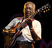Ernest Ranglin Womad Charlton Park 27th July 2008