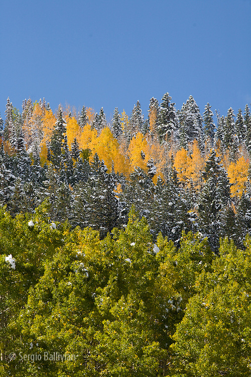 Landscapes of the San Juan Mountains and fall foliage near Telluride, CO