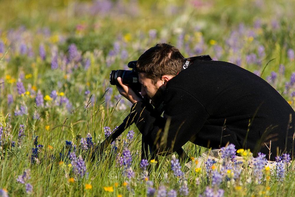 Photographer, Glacier National Park.