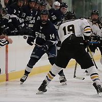 St. Olaf vs UW River Falls Women's Hockey