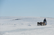 John Baker crosses the sea ice on Golovin Bay as he approaches the White Mountain checkpoint during the 2011 Iditarod.