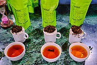 Inde, Bengale Occidental, Darjeeling, Jogmaya Tea Estates Factory, degustaton // India, West Bengal, Darjeeling, Jogmaya Tea Estates Factory, tasting