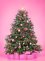 Decorated Christmas tree with presents and gift boxes isolated on pink background