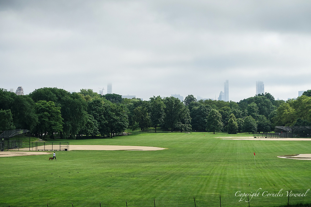 North Meadow in Central Park