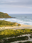 High-angle view of Sandfly Beach and Bay at sunset, on the Otago Peninsula, near Dunedin, Otago, New Zealand