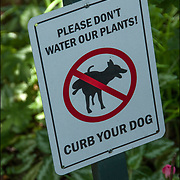 """Humorous Sign """"Please  Don't Water Our Plants! Curb your Dog""""  in the Jefferson Market Garden, NYC."""
