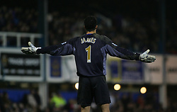 Portsmouth, England - Saturday, February 10, 2007: Portsmouth's David James against Manchester City during the Premiership match at Fratton Park. (Pic by Chris Ratcliffe/Propaganda)