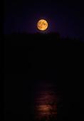 Suns & Moons